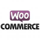 Stanbic IBTC Webpay Gateway for WooCommerce